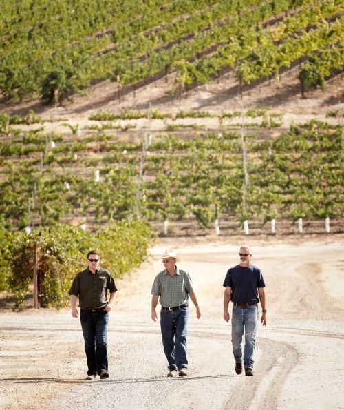 General Manager Matt Merrill, Dana Merrill, and Winemaker Jim Shumate in the Pomar Junction VineyardPhoto by BOTTLE BRANDING