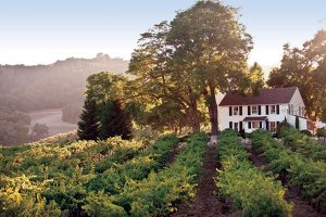 hammersky-vineyards-farm-house-sf12