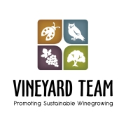 Vineyard Team logo_2013-01