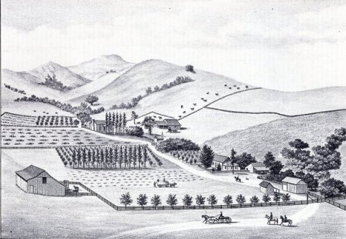 A drawing of Harmony from 1883